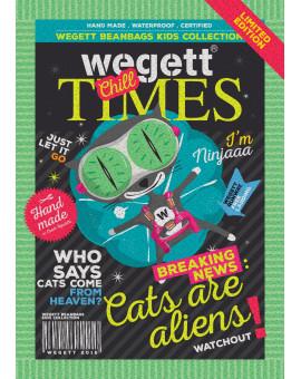 Sedací vak Triangle Cat | Wegett